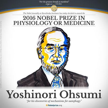 Giai Nobel Y-Sinh hoc 2016 vinh danh giao su Nhat Ban Yoshinori Ohsumi - Anh 5