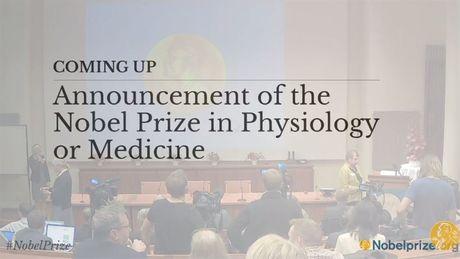 Giai Nobel Y-Sinh hoc 2016 vinh danh giao su Nhat Ban Yoshinori Ohsumi - Anh 8