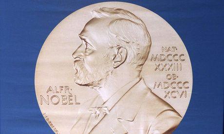 Giai Nobel Y-Sinh hoc 2016 vinh danh giao su Nhat Ban Yoshinori Ohsumi - Anh 9