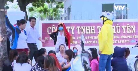 Phu Yen: Nhieu cong nhan bi cho thoi viec vo co - Anh 1