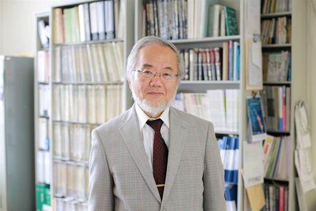 Giai Nobel Y hoc 2016 vinh danh nha khoa hoc Nhat Ban - Anh 1