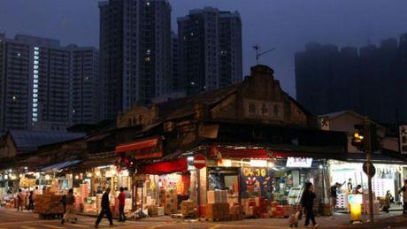 Du Ma Dia: Khu giang ho mot thoi khet tieng o Hong Kong - Anh 2