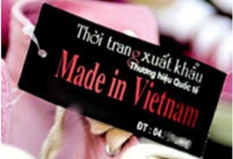 Nhieu san pham gan 'lau' logo hang Viet Nam chat luong cao - Anh 1