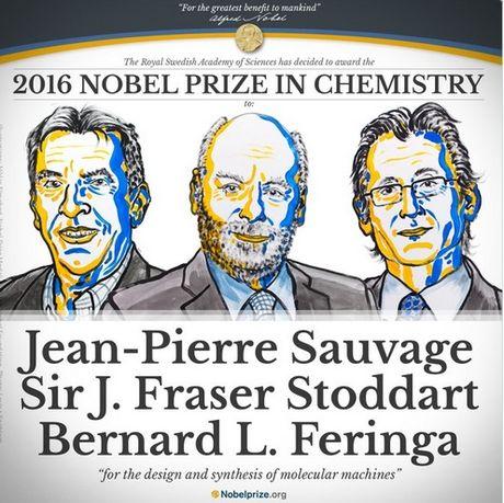 Giai Nobel Hoa hoc 2016 thuoc ve ba nha khoa hoc Phap, Anh, Ha Lan - Anh 1