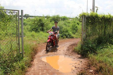 Chum anh: Hang rao duong cao toc TP.HCM-Long Thanh-Dau Giay bi lan chiem - Anh 10