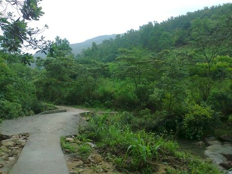 Trekking Lung Xanh - 'Ta Nang vung Dong Bac' - Anh 1