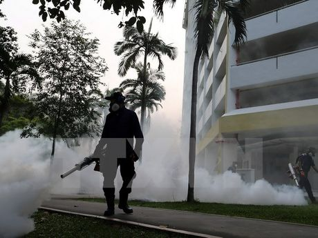 Virus Zika da xuat hien tai 73 nuoc va vung lanh tho tren the gioi - Anh 1
