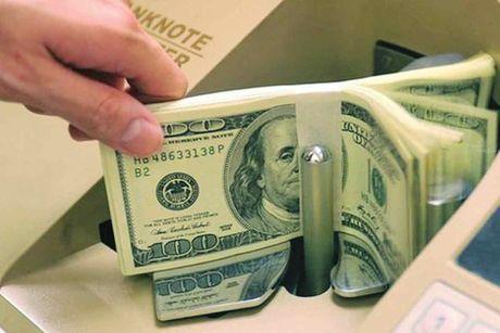 Kieu hoi ve TP.HCM uoc dat gan 6 ty USD trong nam 2016 - Anh 1