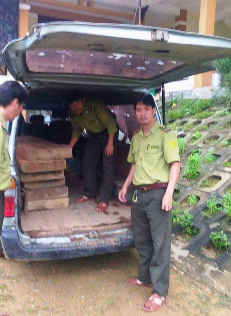 """Lam tac"" dung xe o to bien xanh van chuyen go lau - Anh 3"
