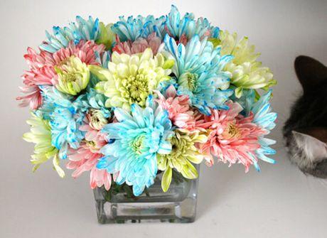 Bi quyet nhuom mau cho hoa cuc trang cuc nhanh - Anh 12