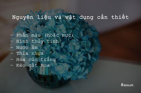 Bi quyet nhuom mau cho hoa cuc trang cuc nhanh - Anh 2