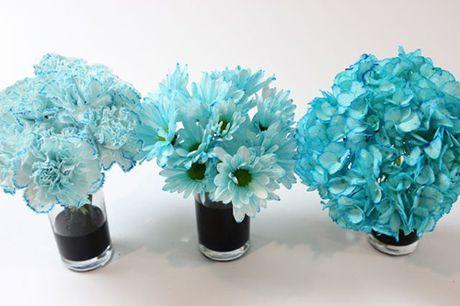 Bi quyet nhuom mau cho hoa cuc trang cuc nhanh - Anh 8
