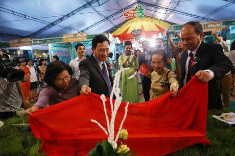 Ha Noi: Khai mac Hoi cho hang Viet Nam chat luong cao Thuc pham - Nong san sach 2016 - Anh 7