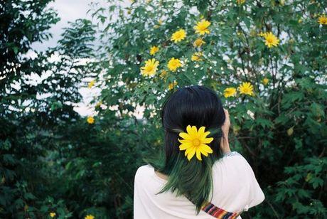 Ngat ngay voi nhung cung duong hoa da quy o Da Lat - Anh 1