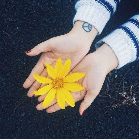 Ngat ngay voi nhung cung duong hoa da quy o Da Lat - Anh 2