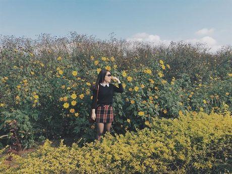 Ngat ngay voi nhung cung duong hoa da quy o Da Lat - Anh 5