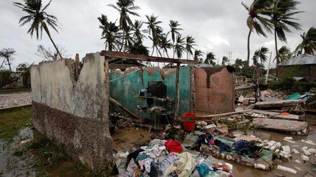Haiti lam vao tinh trang khung hoang sau bao Matthew - Anh 5