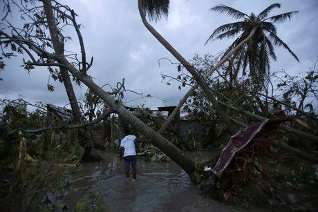 Sieu bao 'Quai vat' khien 870 nguoi chet o Haiti - Anh 3