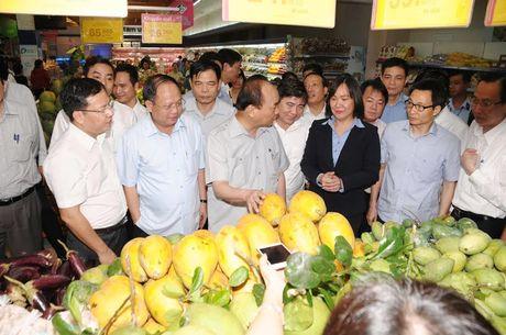 Thu tuong Nguyen Xuan Phuc bat ngo thi sat sieu thi - Anh 1