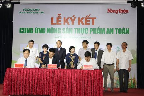 15 doanh nghiep cam ket cung ung nong san an toan - Anh 1