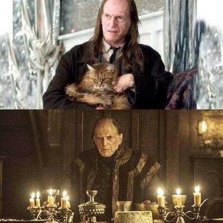 Game of Thrones va Harry Potter co diem gi chung? Chinh la nhung dien vien nay! - Anh 3