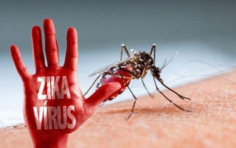 2 phu nu tre nhiem Zika, 1 nguoi mang bau - Anh 1