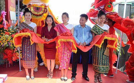 Thu phi setup kinh doanh hang Thai: Doanh nghiep dang 'truc loi'? - Anh 1