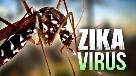 Phat hien them 2 phu nu nhiem vi rut Zika tai TP. HCM va Binh Duong - Anh 1
