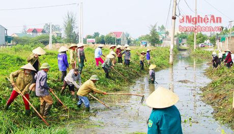 Thanh pho Vinh phat dong toan dan ra quan lam thuy loi - Anh 2