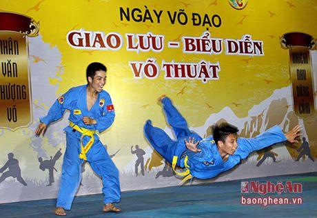 Hao hung chuong trinh giao luu vo thuat tai chua - Anh 1