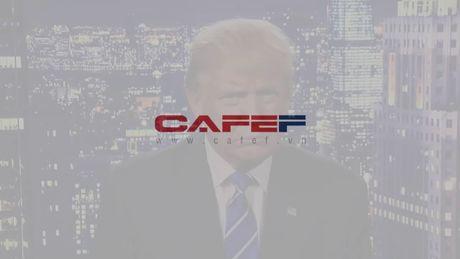 "Donald Trump: ""Toi sai roi, toi xin loi"" - Anh 2"