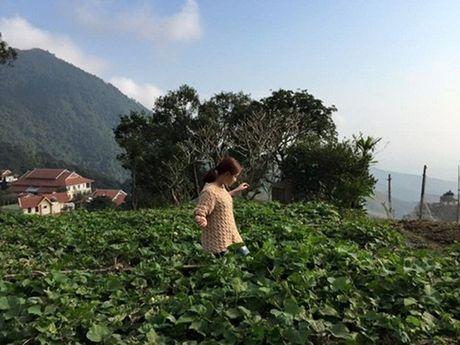 Choang voi 2 dinh thu tai Ha Noi va o que cua Hoang Thuy Linh - Anh 5