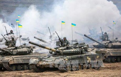 Ukraine tri hoan rut quan theo ke hoach o mien Dong - Anh 1