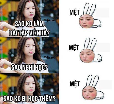 Anh che: Chep bai bi ho, ai dau nhu Hyo Yeon - Anh 4