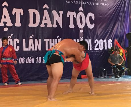 Gay can cap do vat tranh vo dich toan quoc hang tren 85 ky, 2016 - Anh 1