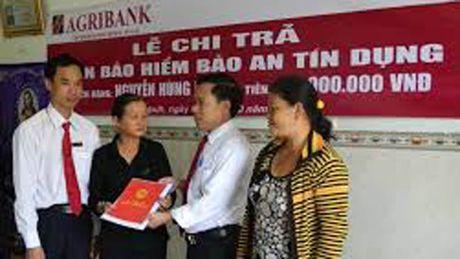 Agribank chung tay giai quyet 'bai toan hoc bua' bao hiem nong nghiep - Anh 1