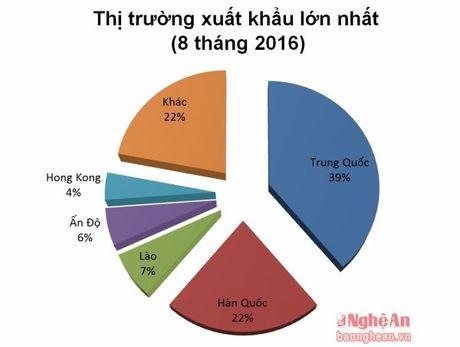 Nghe An: Phan dau dat 500 trieu USD kim ngach xuat khau hang hoa - Anh 4