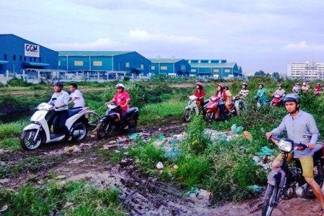 Ket xe kinh hoang trong khu cong nghiep o Sai Gon - Anh 9