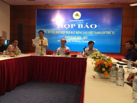 Hiep hoi Bat dong san VN se co so Pho chu tich cao ky luc - Anh 1