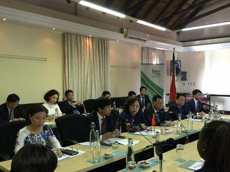 Chu tich HDND TP Nguyen Thi Bich Ngoc tham, lam viec tai Nam Phi va Singapore - Anh 2