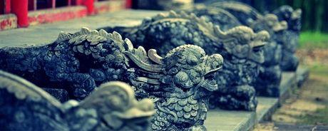 Vi sao vua Gia Long quat mo Quang Trung, tham sat nha Tay Son? - Anh 1