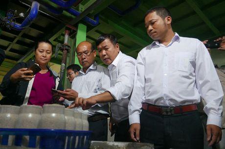 Huong toi ky niem 86 nam ngay thanh lap Hoi Nong dan Viet Nam - Anh 2