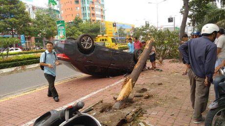 Vung Tau: Toyota Corolla Altis roi tu tren cay xuong va lat ngua, 1 nguoi bi thuong - Anh 1