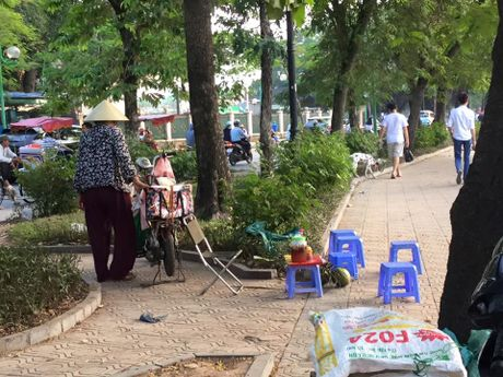 Hang quan ven Ho Tay the nao sau dai han ca chet hang loat? - Anh 11