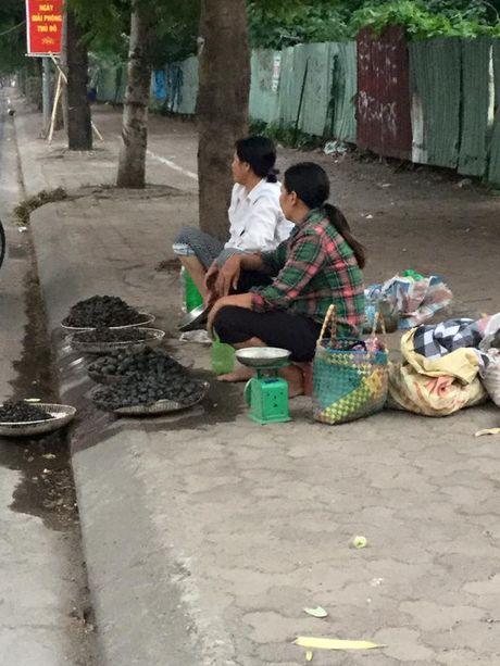 Hang quan ven Ho Tay the nao sau dai han ca chet hang loat? - Anh 9