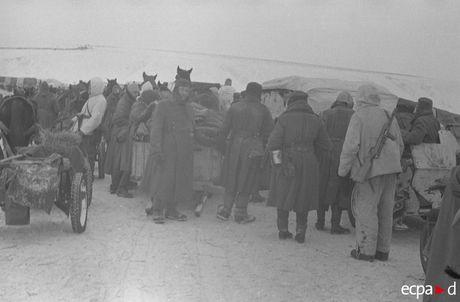 Loat anh kinh hoang mat tran Stalingrad nam 1942-1943 - Anh 19