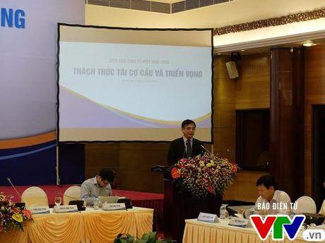 Kinh te Viet Nam: Tai co cau hoac tut hau - Anh 2