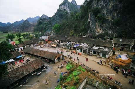 Chum anh an tuong ve ve dep hoa Tam giac mach Ha Giang - Anh 7