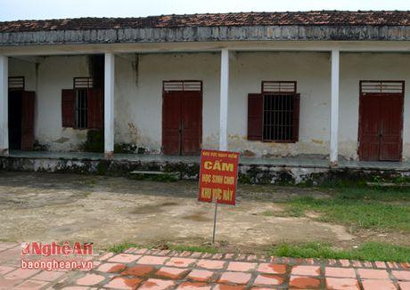 HDND tinh: Dien Chau phai xu li o nhiem moi truong, lam ro sai pham cho thue cang Lach Van - Anh 4