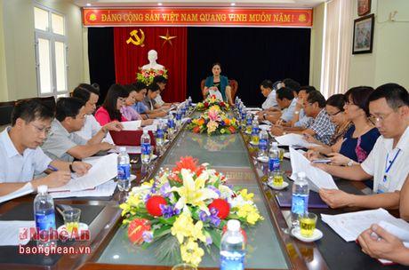 HDND tinh: Dien Chau phai xu li o nhiem moi truong, lam ro sai pham cho thue cang Lach Van - Anh 5